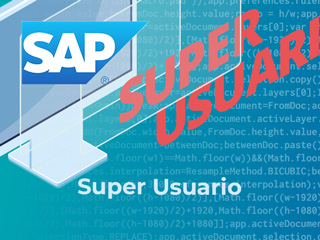 Curso SAP Super Usuario Key User